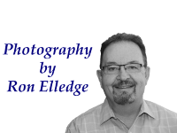 Ron Elledge Photography